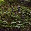 岩屋神社 境内の石仏群 福岡県朝倉郡東峰村 宝珠山