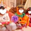 3歳と楽しむハロウィンパーティー