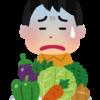 野菜が苦手な子供に困った経験