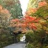 京都 赤山禅院・へちま加持  2020年10/1(金)(仲秋の名月の日)