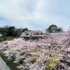 【金沢城めぐり】石川門の石川櫓も菱櫓と同じく実はひそかに菱形構造だった!