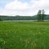 尾瀬沼山荘に泊まって尾瀬沼一周とニッコウキスゲを楽しむ7月の1人旅