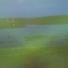 夜明け前の風連湖