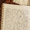 ウェンディの手記書き起こし Wendy's journal script #Ingress