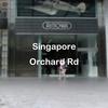 シンガポールのApple Storeに行ってみたかったので、Orchard Road(オーチャード通り)に行ってみた!