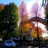 東京藝術大学とその周り -5-