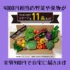 4000円相当の美味しい新鮮な野菜を実質980円でゲットする方法
