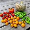 野菜まとめて収穫