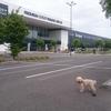 いいね:プレミアム・アウトレット・プラハ空港(Premium Outlet Prague Airport)  [UA-125732310-1]