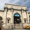 DAY129 ラストヴァース④ ニューヨーク④ 自然史とSleep  no more