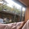 【2020.3 京都旅行記⑤】朝の産寧坂をお散歩。