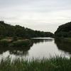 じゅんさい池緑地 千葉県市川市中国分