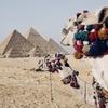 神秘のピラミッドもコロナには勝てずー閑古鳥がなくエジプト