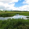 雨竜沼湿原へ【3】