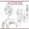 馬のイラスト描いてます。
