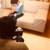 今日はNHK長崎さんの自宅取材でした♪♪