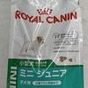 私のおすすめ  10(ロイヤルカナン SHN ミニ ジュニア 犬用 2kg)