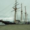 帆船「みらいへ」を見て来る…