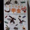 【書評】くらべてわかる甲虫1062種