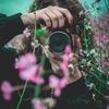 <副業>写真を売るアプリ『Snap mart』は稼ぐことはできるのか