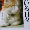 「むらさき屋 - 大佛次郎」徳間文庫 猫のいる日々 から