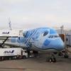 ANAホノルル路線 フライングホヌ / Flying Honu, ANA Honolulu route