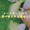 イースターとは?うさぎと卵が使われる理由と楽しみ方
