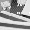 現役ANA陸マイラーのクレジットカード保有状況! SPGアメックスが仲間入り!【2017年5月】