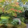 京都嵐山、宝厳院で初秋の獅子吼の庭を楽しむ!