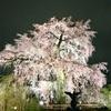 年末アフター 帰る イン 京都