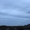 1月15日(水)曇りのち晴れ