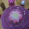 桜のお菓子と花壇〜♪