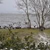 くっそ寒いのに琵琶湖湖岸で孤独な撮影会