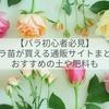 【バラ初心者必見】バラ苗が買える通販サイト&おすすめの土や肥料まとめ!