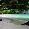 【子供連れクラビ旅行】美しい海を満喫!クラビでは離島を訪れるアイランド・ホッピングが絶対おすすめ!