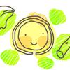 食費の節約~大根の皮、レタスの外の方の葉、ブロッコリーの茎なども利用する