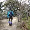 荒平山・油山〔第564歩〕