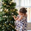 2019年 クリスマスツリーを飾りました