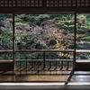 【もっと知りたい!】京都大学のリカレント教育 人気の社会人向け講座ってどんな感じ?