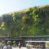 アヴィニヨン観光 アヴィニヨンの市場LES HALLES はこんなところ (10日目)