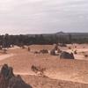 毎日更新 1983年 バックトゥザ 昭和58年11月9日 オーストラリア一周 バイク旅 138日目  23歳 小学校訪 味噌煮込 ヤマハXS250  ワーキングホリデー ワーホリ  タイムスリップブログ シンクロ 終活