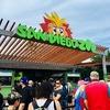 サンディエゴ動物園とバルボアパークを訪れる