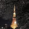 出発準備、そして大好きな東京タワー