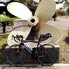 BRM331福山200 - 退官パーティーからのしまなみサイクリング