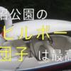 【観光】大沼公園固定公園のアヒルボートと団子レビュー