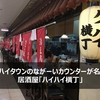 【ハイハイ横丁@大阪上本町】ハイハイタウンの長いカウンターが名物の居酒屋でひとり酒
