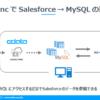 SalesforceからMySQLへレプリケートしたデータをbiz-StreamでPDF出力する:CData Sync