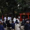下鴨神社の糺の森を歩く