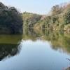 五反田溜池(山口県山陽小野田)