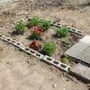 花壇を作る その2